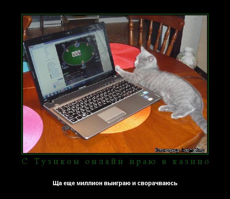 Котоматрица: С Тузиком онлайн ираю в казино Ща еще миллион выиграю и сворачваюсь