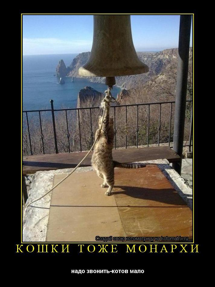 Котоматрица: КОШКИ ТОЖЕ МОНАРХИ надо звонить-котов мало