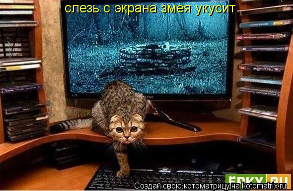 Котоматрица: слезь с экрана змея укусит слезь с экрана змея укусит