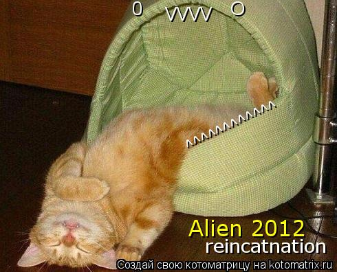 Котоматрица: 0                O                 ^^^^^^^^^^^^ VVVV Alien 2012 reincatnation