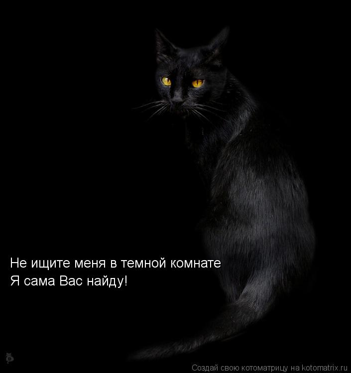 Котоматрица: Не ищите меня в темной комнате Я сама Вас найду!