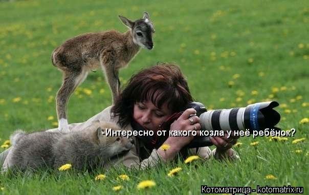 Котоматрица: -Интересно от какого козла у неё ребёнок?