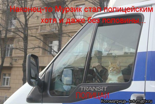 Котоматрица: ПОЛИЦАИ Наконец-то Мурзик стал полицейским хотя и даже без половины...