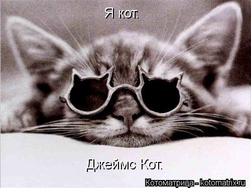 Котоматрица: Я кот. Джеймс Кот.