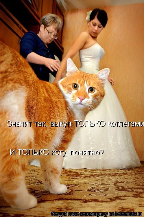 Котоматрица: Значит так, выкуп ТОЛЬКО котлетами  И ТОЛЬКО коту, понятно?