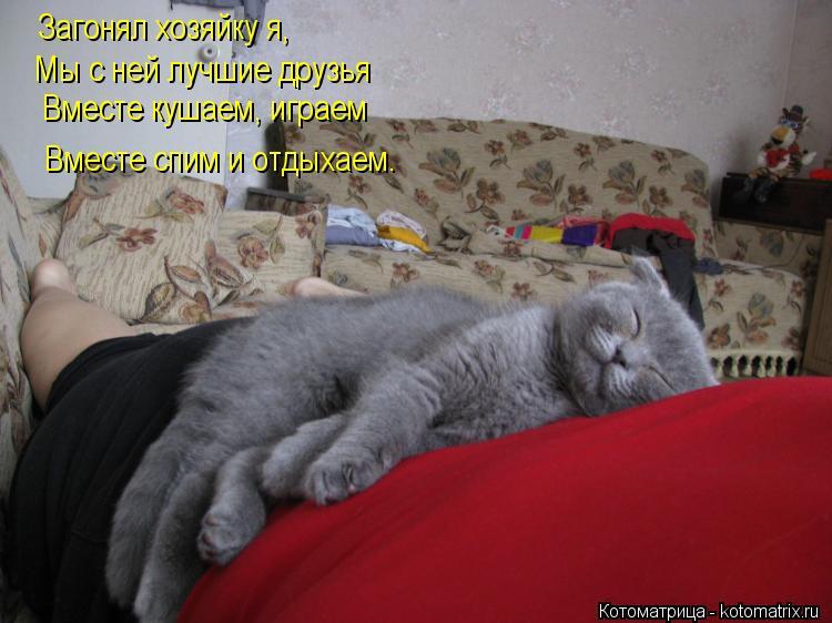Котоматрица: Загонял хозяйку я, Мы с ней лучшие друзья Вместе кушаем, играем Вместе спим и отдыхаем.