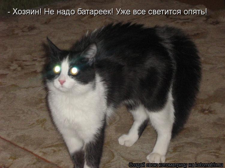 Котоматрица: - Хозяин! Не надо батареек! Уже все светится опять!