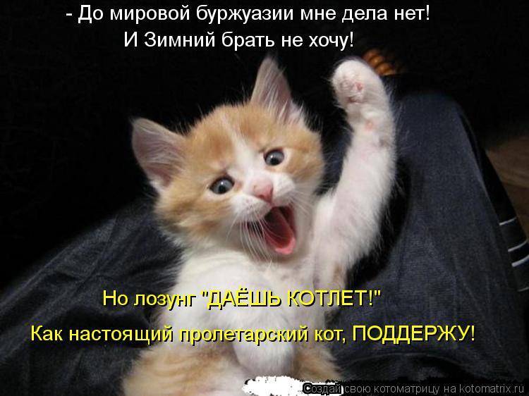"""Котоматрица: - До мировой буржуазии мне дела нет! И Зимний брать не хочу! Но лозунг """"ДАЁШЬ КОТЛЕТ!"""" Как настоящий пролетарский кот, ПОДДЕРЖУ!"""