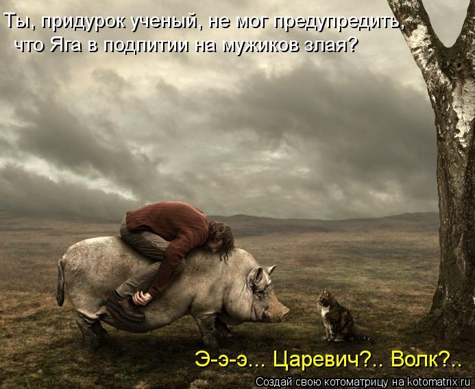 Котоматрица: Ты, придурок ученый, не мог предупредить,  что Яга в подпитии на мужиков злая? Э-э-э... Царевич?.. Волк?..