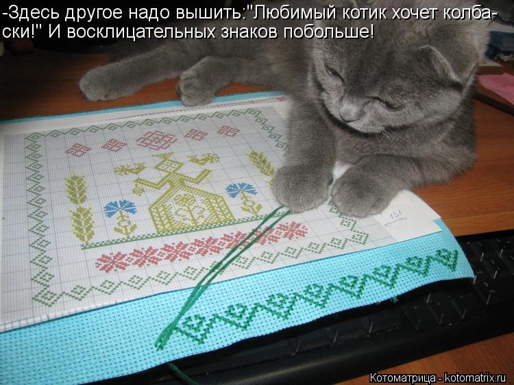 """Котоматрица: -Здесь другое надо вышить:""""Любимый котик хочет колба- ски!"""" И восклицательных знаков побольше!"""