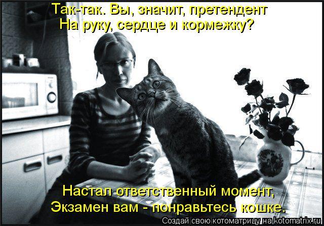 Котоматрица: Так-так. Вы, значит, претендент На руку, сердце и кормежку? Настал ответственный момент, Экзамен вам - понравьтесь кошке.