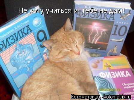 Котоматрица: Не хочу учиться и  тебе не дам!