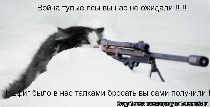Котоматрица: Война тупые псы вы нас не ожидали !!!!! НЕфиг было в нас тапками бросать вы сами получили !!!!!