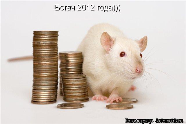 Котоматрица: Богач 2012 года)))