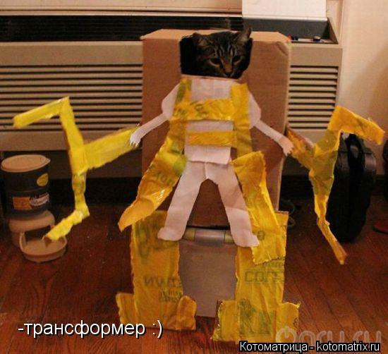 Котоматрица: -трансформер :)
