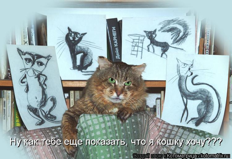 Котоматрица: Ну как тебе еще показать, что я кошку хочу???