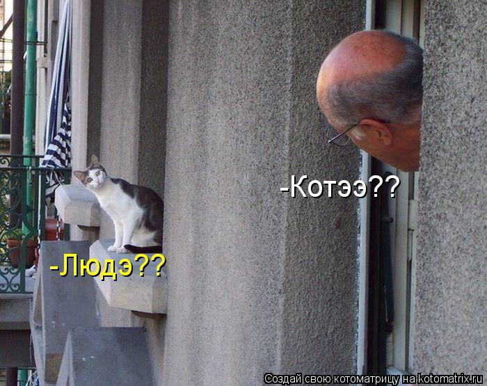 Котоматрица: -Котээ?? -Людэ??