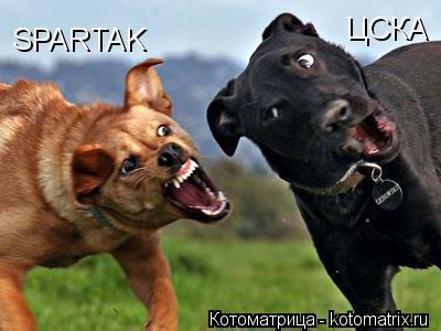 Котоматрица: SPARTAK ЦСКА