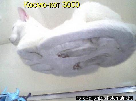 Котоматрица: Космо-кот 3000