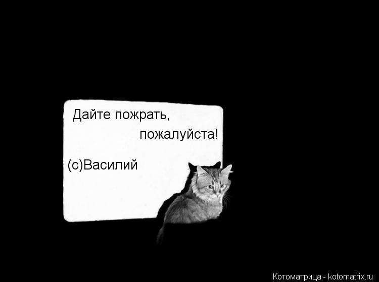 Котоматрица: Дайте пожрать, пожалуйста! (с)Василий