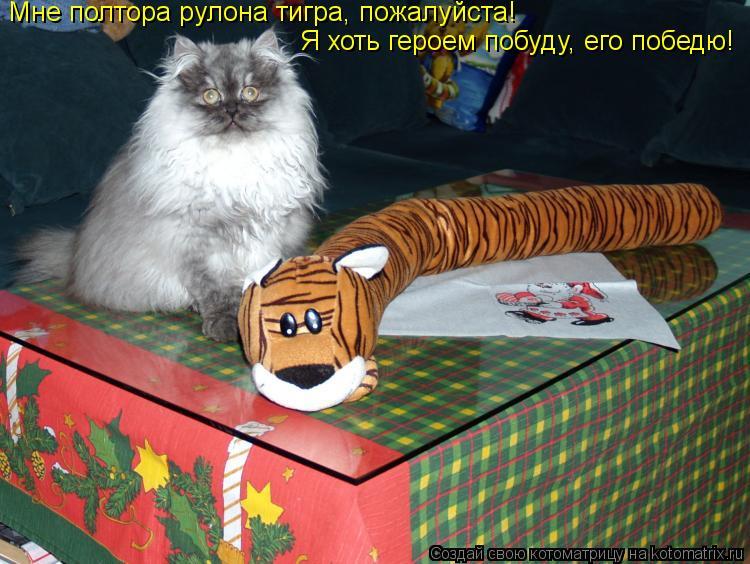 Котоматрица: Мне полтора рулона тигра, пожалуйста! Я хоть героем побуду, его победю!