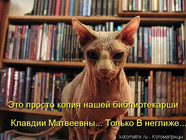 Котоматрица: Клавдии Матвеевны... Только В неглиже... Это просто копия нашей библиотекарши