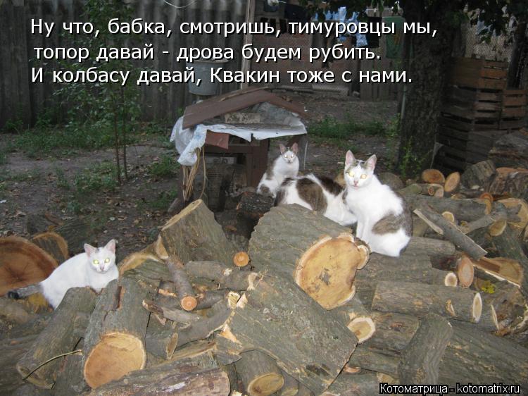 Пословица дрова давай