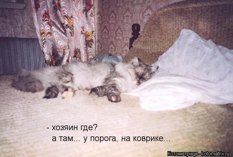 Котоматрица: - хозяин где? а там... у порога, на коврике...