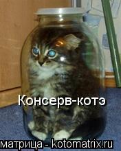 Котоматрица: Консерв-котэ