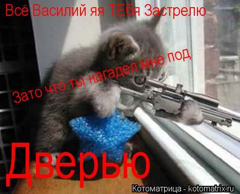 Котоматрица: Всё Василий яя ТЕбя Застрелю Зато что ты нагадел мне под Дверью