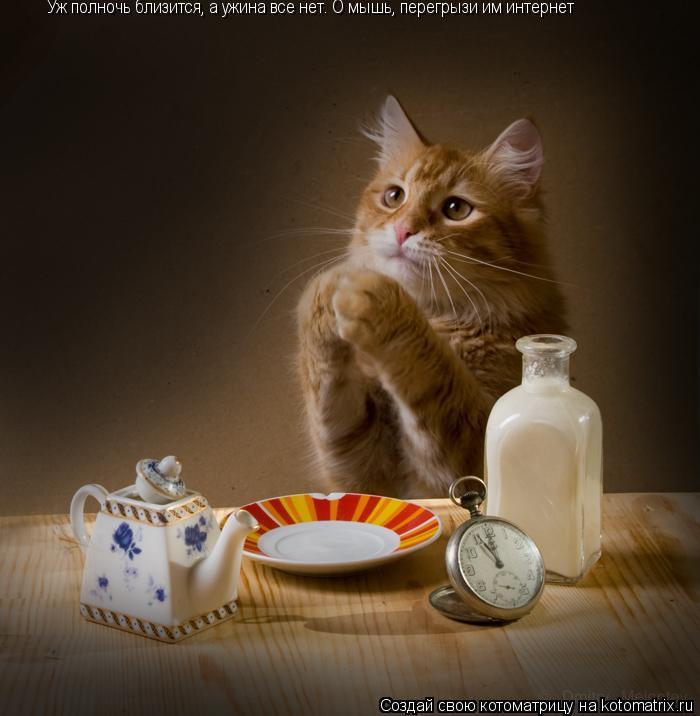 Котоматрица: Уж полночь близится, а ужина все нет. О мышь, перегрызи им интернет