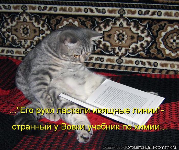 """Котоматрица: ...""""Его руки ласкали изящные линии""""- странный у Вовки учебник по химии..."""