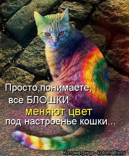 Котоматрица: Просто,понимаете, все БЛОШКИ под настроенье кошки... меняют цвет