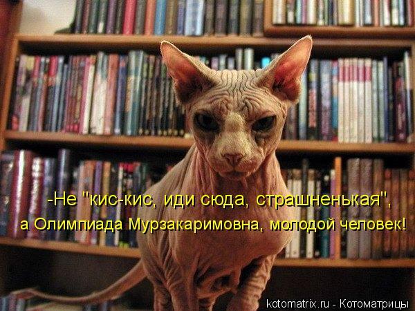 "Котоматрица: -Не ""кис-кис, иди сюда, страшненькая"", а Олимпиада Мурзакаримовна, молодой человек!"