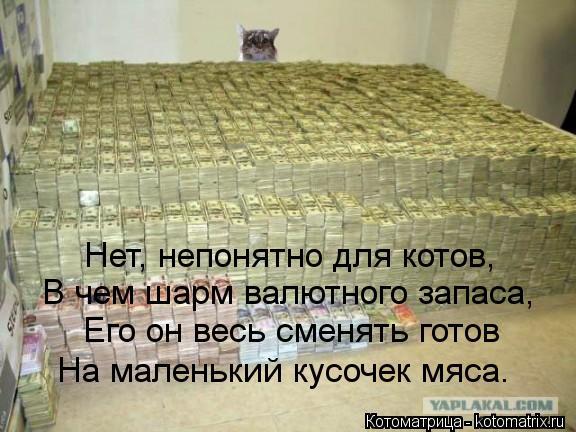 Котоматрица: Нет, непонятно для котов, В чем шарм валютного запаса, Его он весь сменять готов На маленький кусочек мяса.