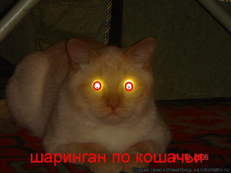 Котоматрица: о о шаринган по кошачьи , ,