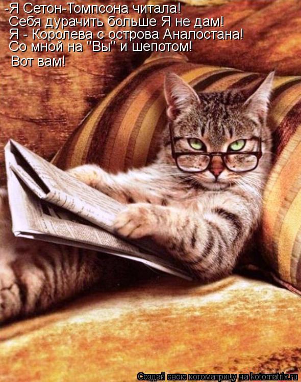 """Котоматрица: -Я Сетон-Томпсона читала! Себя дурачить больше Я не дам! Я - Королева с острова Аналостана! Со мной на """"Вы"""" и шепотом! Вот вам!"""