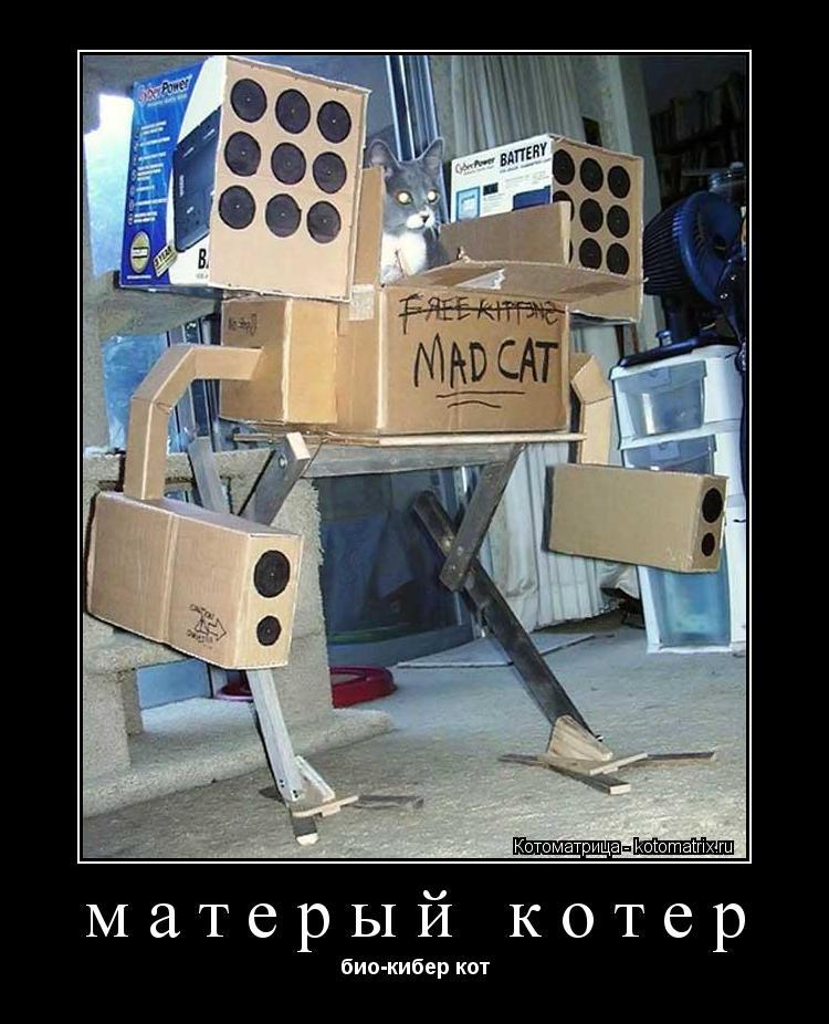 Котоматрица: матерый котер био-кибер кот