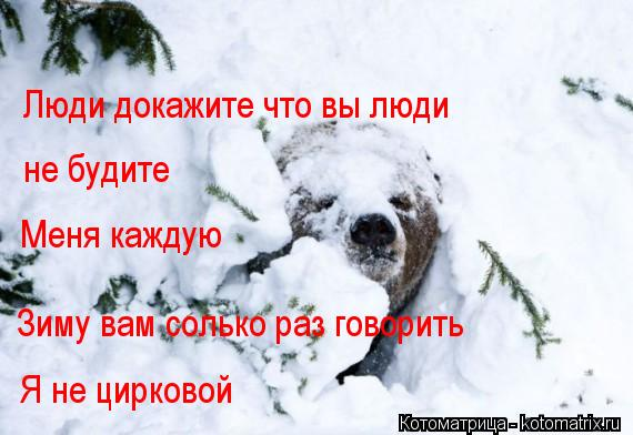 Котоматрица: Люди докажите что вы люди не будите Меня каждую Зиму вам солько раз говорить Я не цирковой