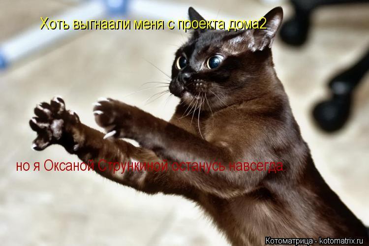 Котоматрица: Хоть выгнаали меня с проекта дома2 но я Оксаной Стрункиной останусь навсегда.