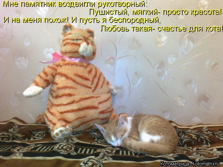 Котоматрица: Мне памятник воздвигли рукотворный: Пушистый, мягкий- просто красота! И на меня похож! И пусть я беспородный, Любовь такая- счастье для кота!