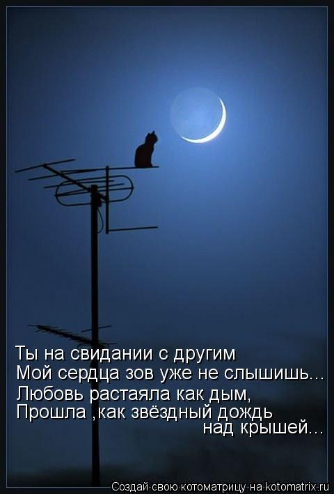 Котоматрица: Ты на свидании с другим Мой сердца зов уже не слышишь... Любовь растаяла как дым, Прошла ,как звёздный дождь  над крышей...