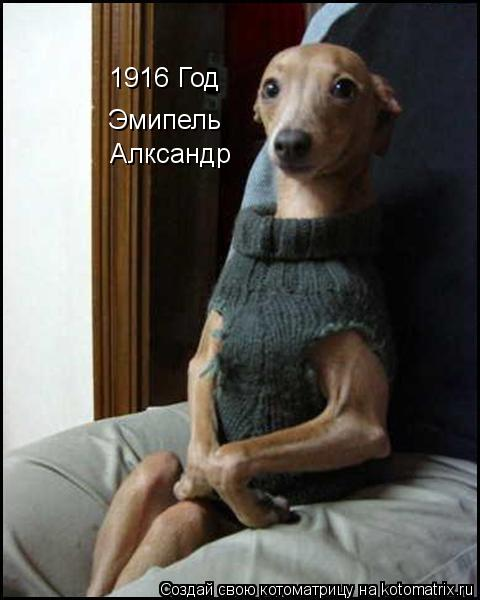 Котоматрица: 1916 Год Эмипель Алксандр