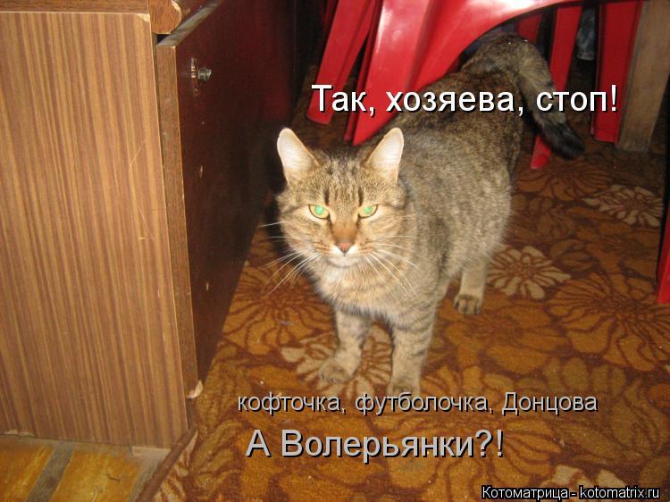 Котоматрица: Так, хозяева, стоп!  кофточка, футболочка, Донцова А Волерьянки?!