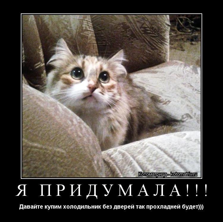 Котоматрица: Я ПРИДУМАЛА!!! Давайте купим холодильник без дверей так прохладней будет)))