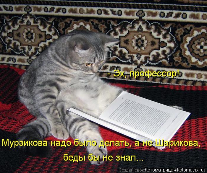 Котоматрица: - Эх, профессор! Мурзикова надо было делать, а не Шарикова, беды бы не знал...