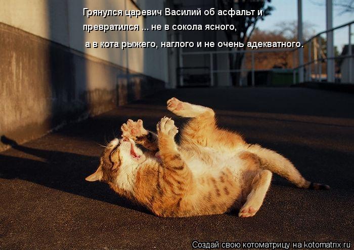 Котоматрица: Грянулся царевич Василий об асфальт и превратился ... не в сокола ясного, а в кота рыжего, наглого и не очень адекватного.