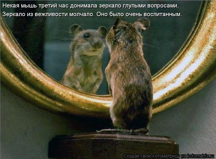 Котоматрица: Некая мышь третий час донимала зеркало глупыми вопросами. Зеркало из вежливости молчало. Оно было очень воспитанным.