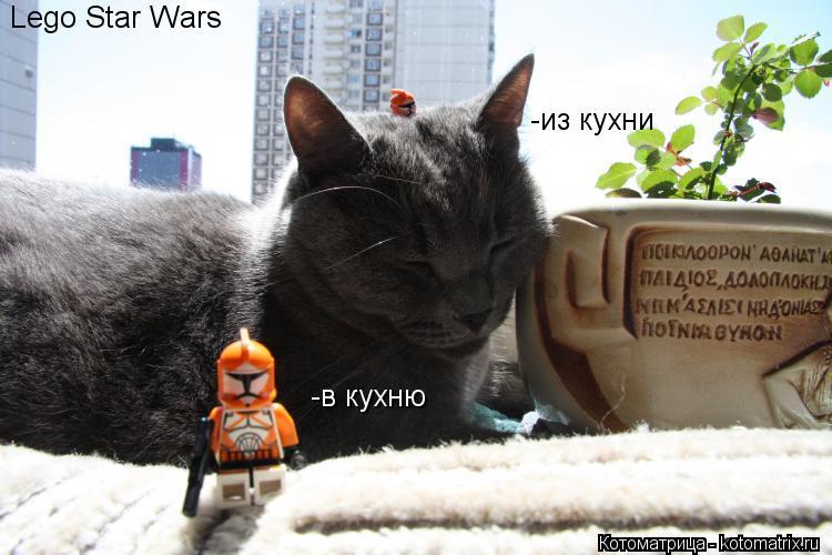 Котоматрица: -в кухню -из кухни Lego Star Wars