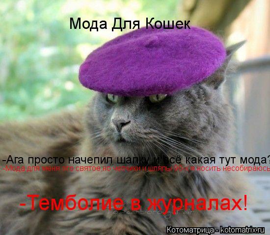Котоматрица: Мода Для Кошек -Ага просто начепил шапку и всё какая тут мода? -Мода для меня это святое,но чепчики и шляпы 90-х я носить несобираюсь -Темболие